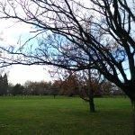 Foto de Parque Pollard