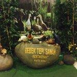 Bebek Tepi Sawah Foto