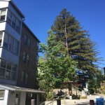 Foto de University of California at Santa Cruz