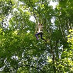 Photo of Go Ape Treetop Adventure Course