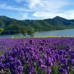 Lake Kanayama