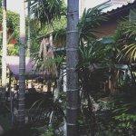 Foto de Koko Palm Inn