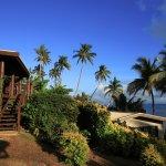 Coconut Grove Beachfront Cottages Foto