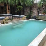 Ammatara Pura Pool Villa Foto