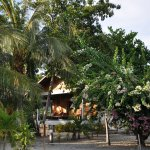 Pom Pom Island Resort & Spa Foto
