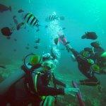 Photo of WaterColors Boracay Dive Resort