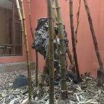 Foto de Pullman Dongguan Forum