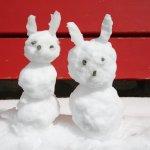 我在山顶堆了两个小雪人,送给远方的宝贝