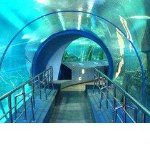 Photo of Beijing Underwater World Exhibition