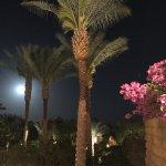Photo of Four Seasons Resort Sharm El Sheikh