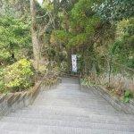 Photo of Lake Ikeda