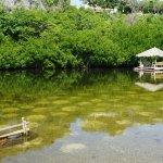 Photo of Bluewater Sumilon Island Resort