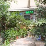 酒店的平台有个小花园,绿意盎然非常漂亮安静