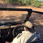 Photo of Nhongo Safaris