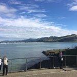 Photo of Otago Peninsula