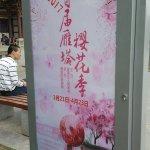 Qing Long Si Foto