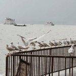 Photo of Dian Lake (Dian Chi)