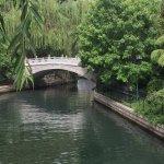 大明湖公园里的一座桥
