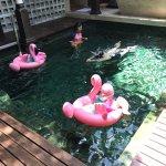 Photo of Le Meridien Koh Samui Resort & Spa