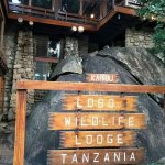 Lobo Wildlife Lodge Foto