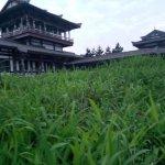 Photo de LangyaTai Scenic Resort