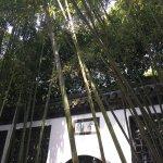 Photo of Geyuan Garden