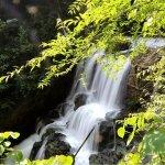 Wudao Gorge