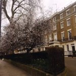 Photo of Shaftesbury Metropolis London Hyde Park