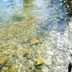 Photo of Erhai Lake