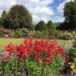 Photo of Dunedin Botanic Garden
