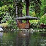 Dunedin Botanic Garden Foto