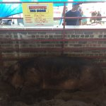 Photo of Iowa State Fairgrounds