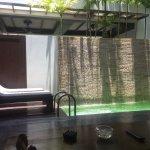 Foto de Malisa Villa Suites
