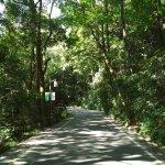 Photo de Mount Yuelu