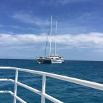 Photo of Seastar Cruises Reef Day Trips