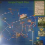 Photo of Jungle Flight