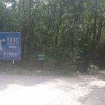 Photo of Linggu Si