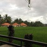 Photo of Gula Bali