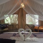 Photo of Sarova Mara Game Camp