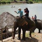 Foto di Elephant Village Sanctuary & Resort