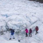 Photo of Fox Glacier Guiding