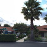 Photo of Regal Palms 5 Star City Resort