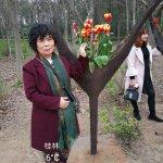 Kaiyuan Forest Park