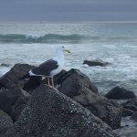 Photo of Coronado Island