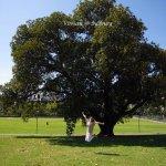 Photo of The Royal Botanic Garden
