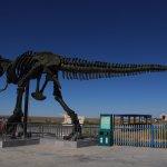Bild från Dinosaur Museum of Erenhot.