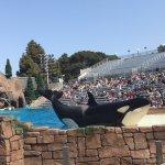 Photo of Birch Aquarium at Scripps
