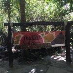 ภาพถ่ายของ อุทยานแห่งชาติหมู่เกาะสิมิลัน