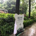 成都大熊猫繁育研究基地照片