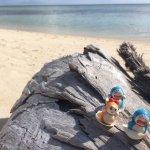 莫德萨岛度假村照片